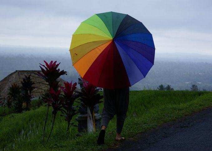 Umbrella, rain on Bali