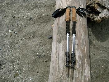 Black Diamond Alpine Carbon Trekking Poles