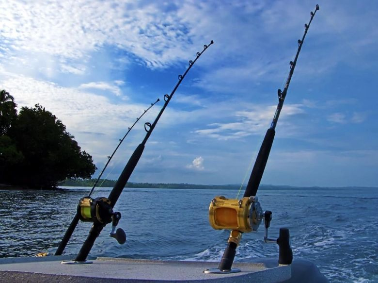 Customized Rods for fishing