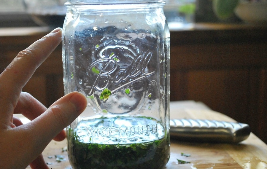 Make Insect Repellent from Herbs