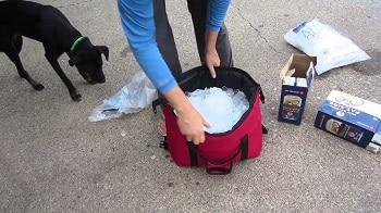 Polar Bear Coolers Soft Cooler