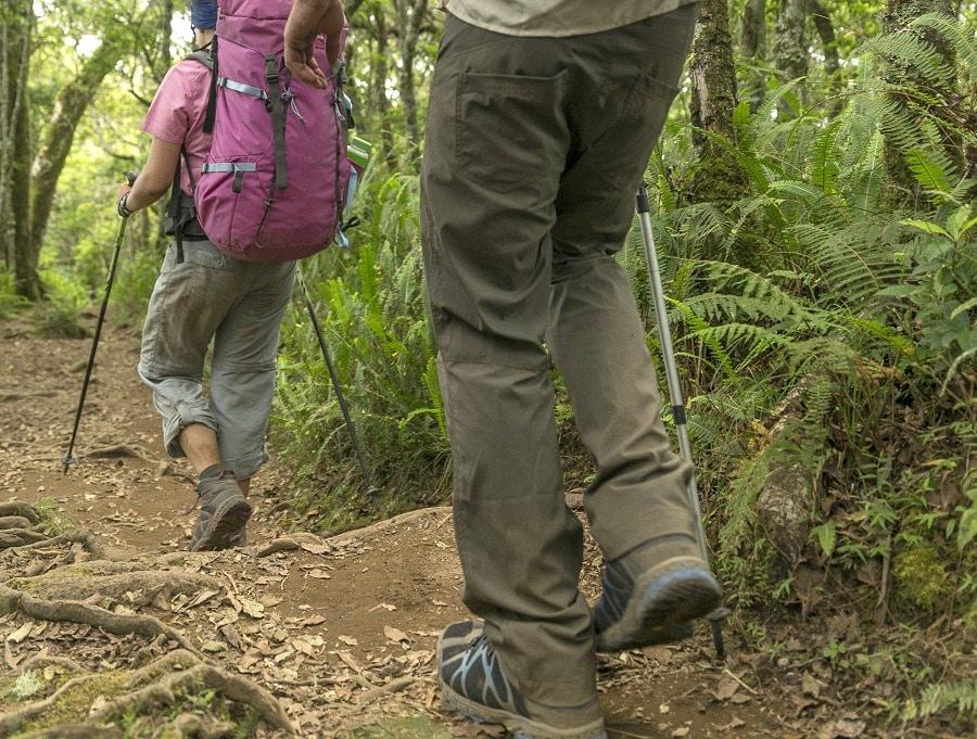 Pants for hiking