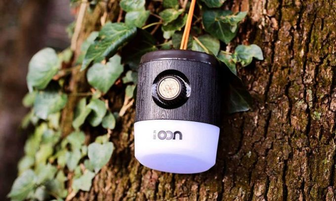 Image showing a camping lantern hanging on a tree