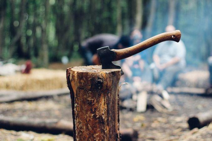 Hatchet in wood