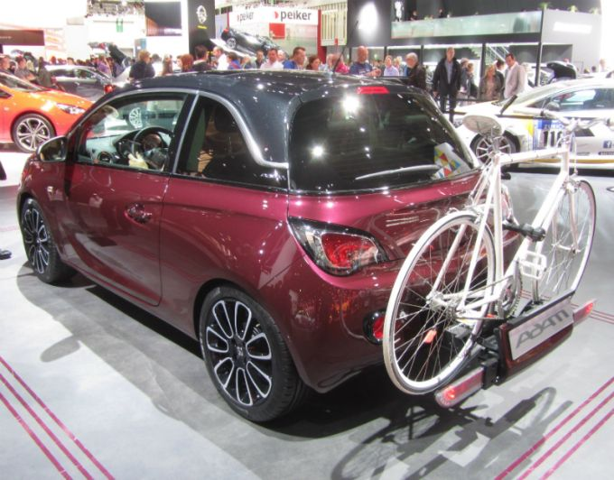 Car with a bike carrier