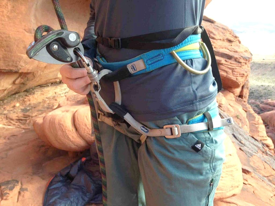 Climbing harness features