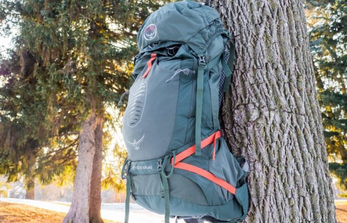 women backpack on tree