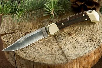Buck Knives 110 Hunter Knife