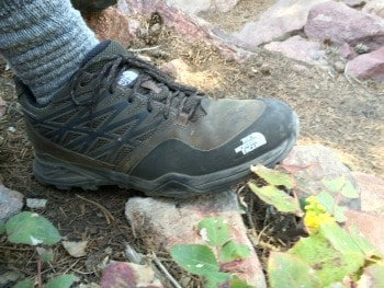 The North Face Men's Hedgehog Hike GTX Hiking Shoe