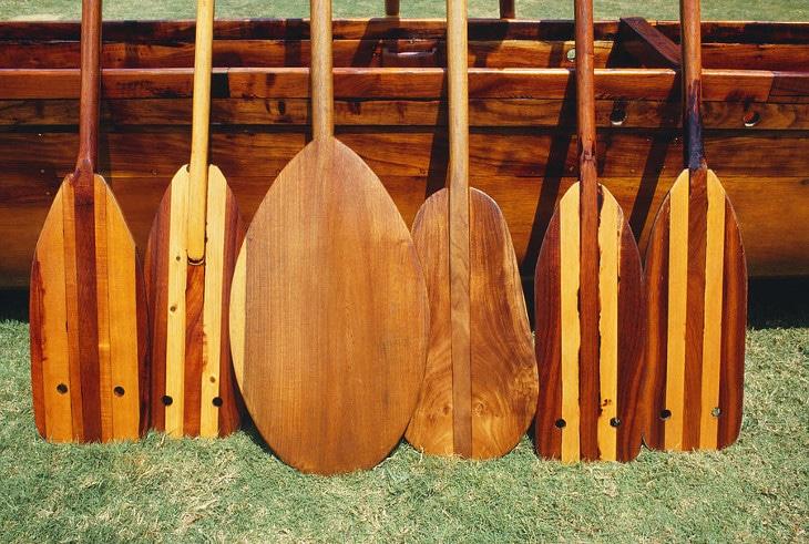Canoe paddles leaning on cano
