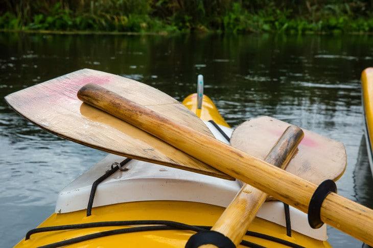 Used canoe paddles
