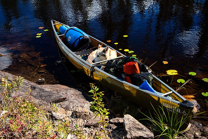 Best Solo Canoe: Top Picks Reviews and Expert's Buying Advice