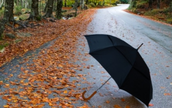 CollarandCuffs London Windproof Umbrella