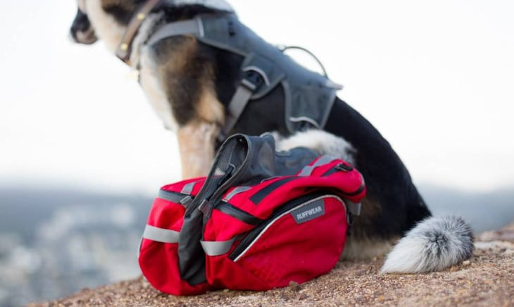 Dog backpack materials