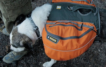 Ruffwear Approach FullDay Hiking Pack