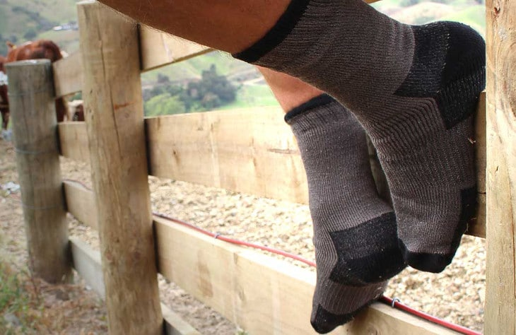 Socks only in ranch