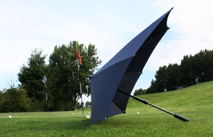 Unusual umbrella canopy