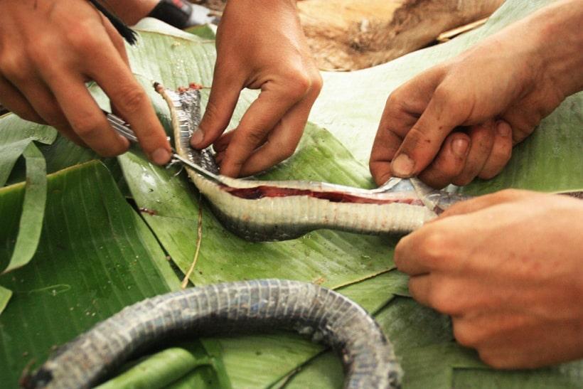 Peeling a snake