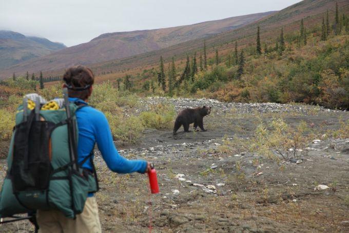man holding spray and a bear