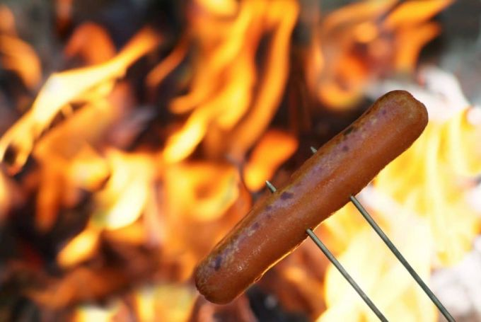 cooking hot dogs on a campfire