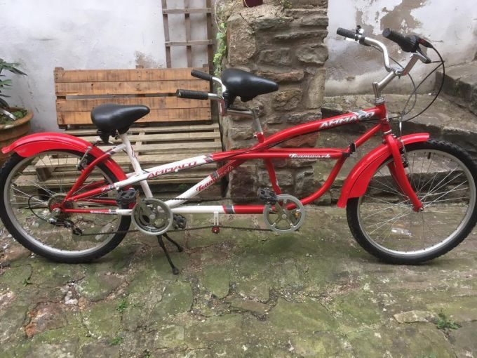 cruiser tandem bike