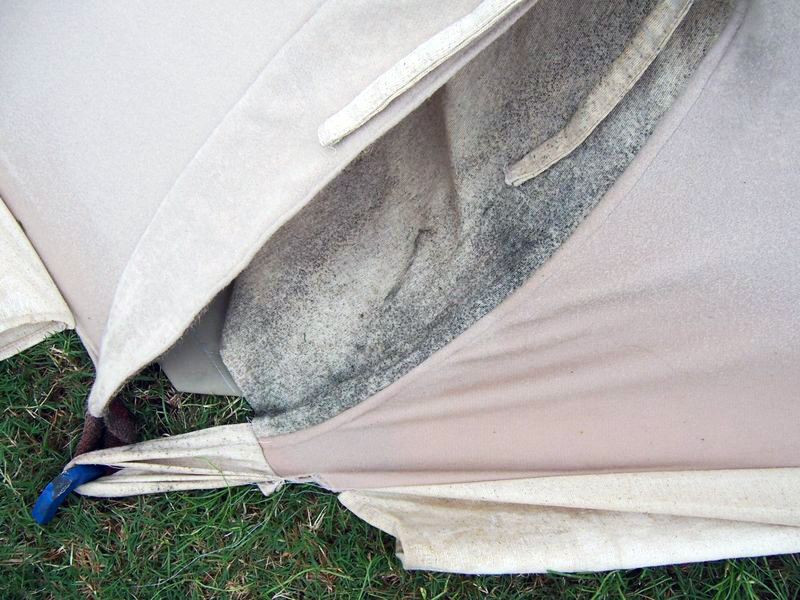 mold on tent