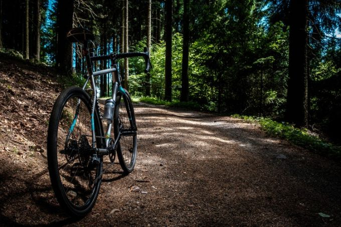 A mountain bike in the woods