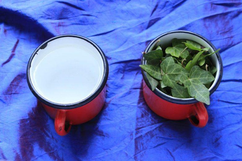 poison ivy tea