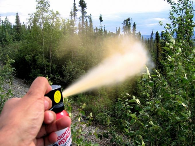 spraying with a bear spray