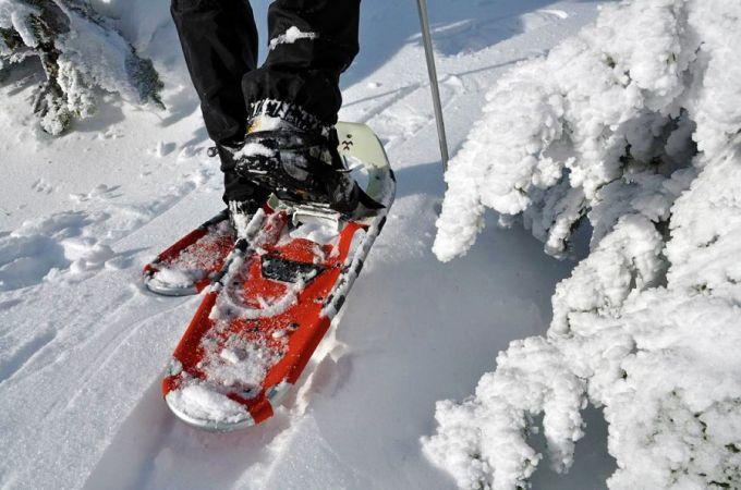 Modern snowshoe floating on snow