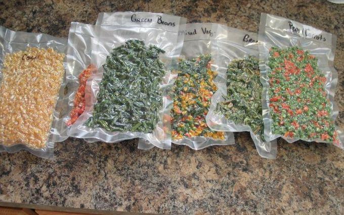 food in sealed odor free bags