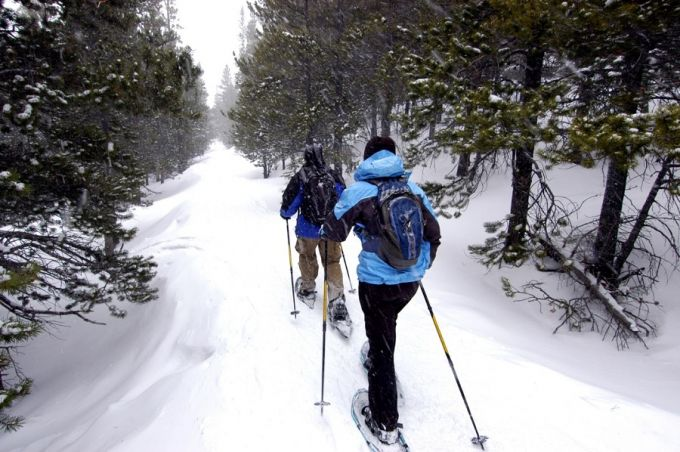 two guys wearing flat terrain snowshoestwo guys wearing flat terrain snowshoes