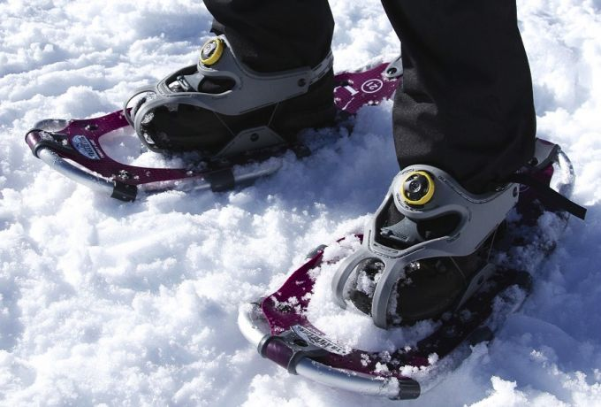 wearing snowshoes