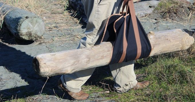 big tree in Firewood Carrier