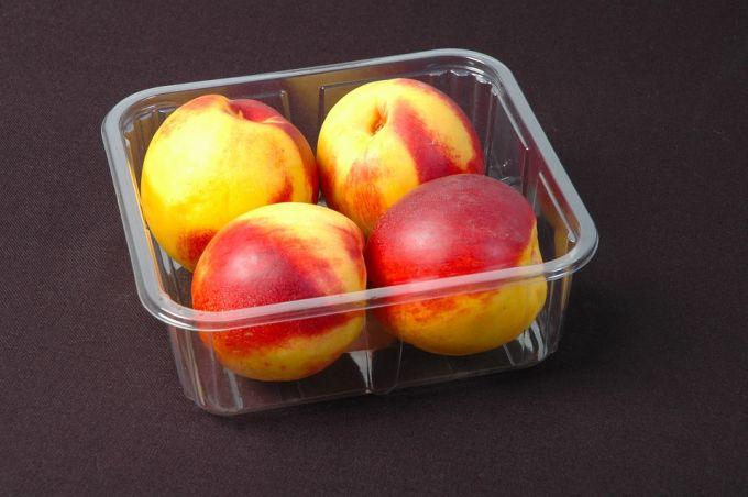 Plastic Food Boxes